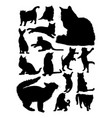 silhouette cats vector image