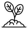 spinach plant icon outline style vector image vector image