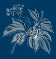 abstract floral sketch blue concept vector image vector image