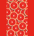 seamless pattern slice orange fruits overlapping vector image vector image