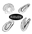 The sketch set seafood oysters and scallops vector image