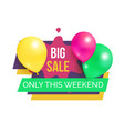 big sale only this weekend hot price promo sticker vector image