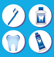 dental care vector image
