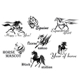 Horses stallions and mustangs vector image vector image