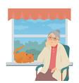 senior woman sitting window - flat design vector image vector image