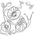 snail and poppy black-and-white vector image vector image