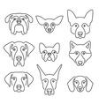 Dog Breeds vector image