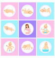 baby in different poses babies collection mother vector image