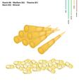 Bamboo Shoot with Vitamin B1 B2 B3 and B6 vector image vector image