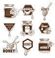 bee honey product sketch icons vector image