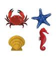 drawing crab star seahorse shell vector image