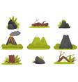 elements of tropical jungle forest landscape set vector image