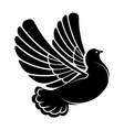flying dove silhouette pigeon in flight bird vector image vector image
