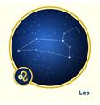Leo constellation vector image vector image