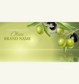 Olive vertical banner vector image vector image