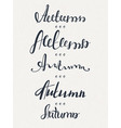set of five words autumn lettering calligraphyt vector image