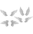 Set of heraldic wings vector image