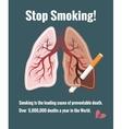 Lungs and smoking stop smoking vector image
