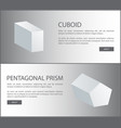 cuboid and pentagonal prism 3d shaped web vector image vector image