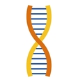 dna strand icon vector image vector image