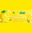 fresh lemonade banner with lemon splash banner vector image