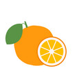 orange with leaves whole and slices oranges vector image