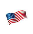 usa flag isolated vector image vector image