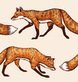 wild red fox seamless pattern forest ginger vector image