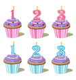 birthday cakes with candles vector image