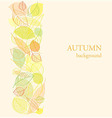Background with border of autumn leaves vector image vector image