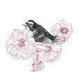 bird hand drawn in vintage style with garden roses vector image vector image