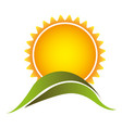 color abstract sun with mountain icon vector image vector image