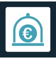 Euro standard icon vector image