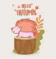 hedgehog hello autumn design icon vector image vector image