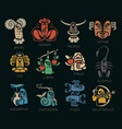 monsters signs of the zodiac icons for horoscopes vector image