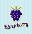 Retro blackberry vector image vector image