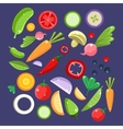 Vegetable Salad Ingredients Collection vector image vector image