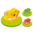 3d design for frogs on leaves vector image vector image