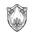 ancient knight shield engraving vector image vector image