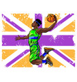 basketball and country flags vector image