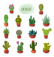 funny and cute cartoon desert cactus in pots vector image vector image