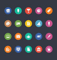 Glyphs Colored Icons 23 vector image vector image
