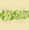 nettle pattern vector image