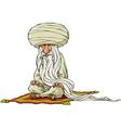 oriental sage vector image