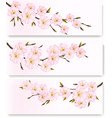 three flower banners vector image
