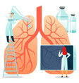 flat large human lungs on a vector image