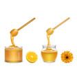 honey dripping from dipper in glass jar vector image