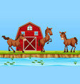 horses in front of red barn vector image vector image