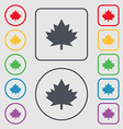 Maple leaf icon Symbols on the Round and square vector image