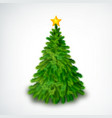realistic christmas tree vector image
